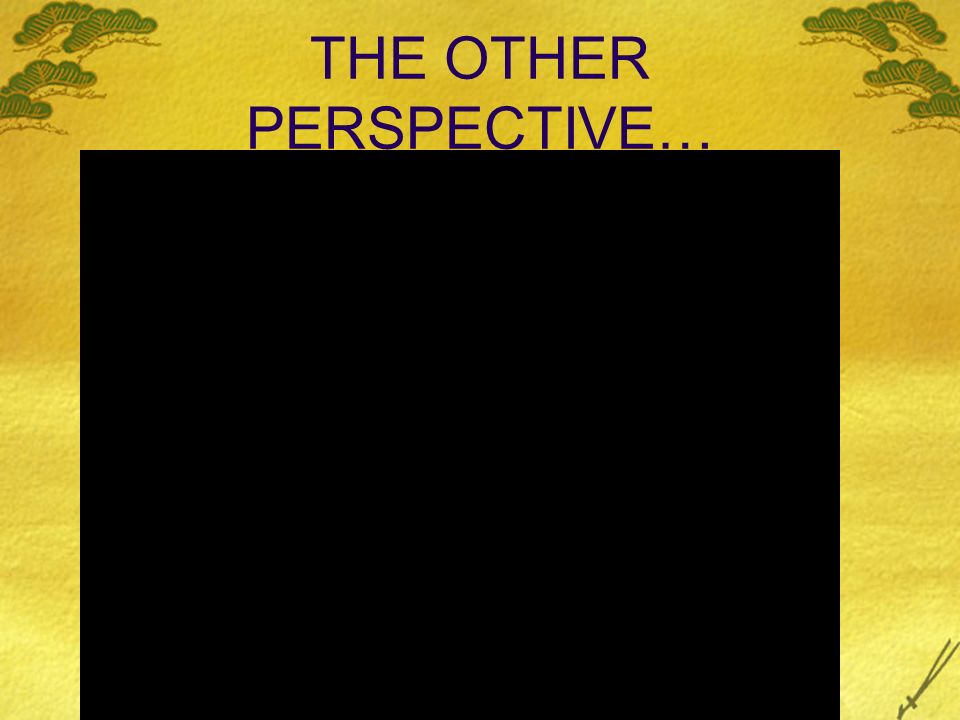 THE OTHER PERSPECTIVE…