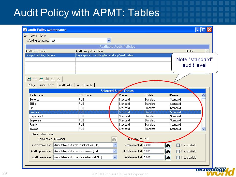 Audit Policy with APMT: Tables