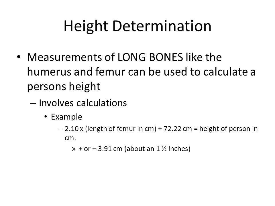 Height Determination Measurements of LONG BONES like the humerus and femur can be used to calculate a persons height.