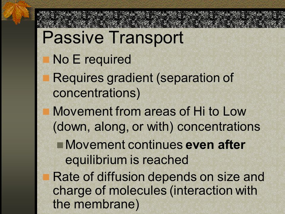 Passive Transport No E required