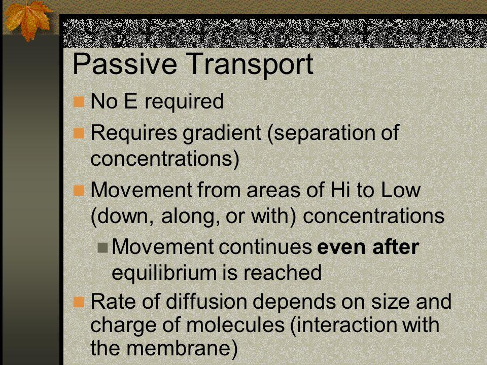 Passive Transport No E required