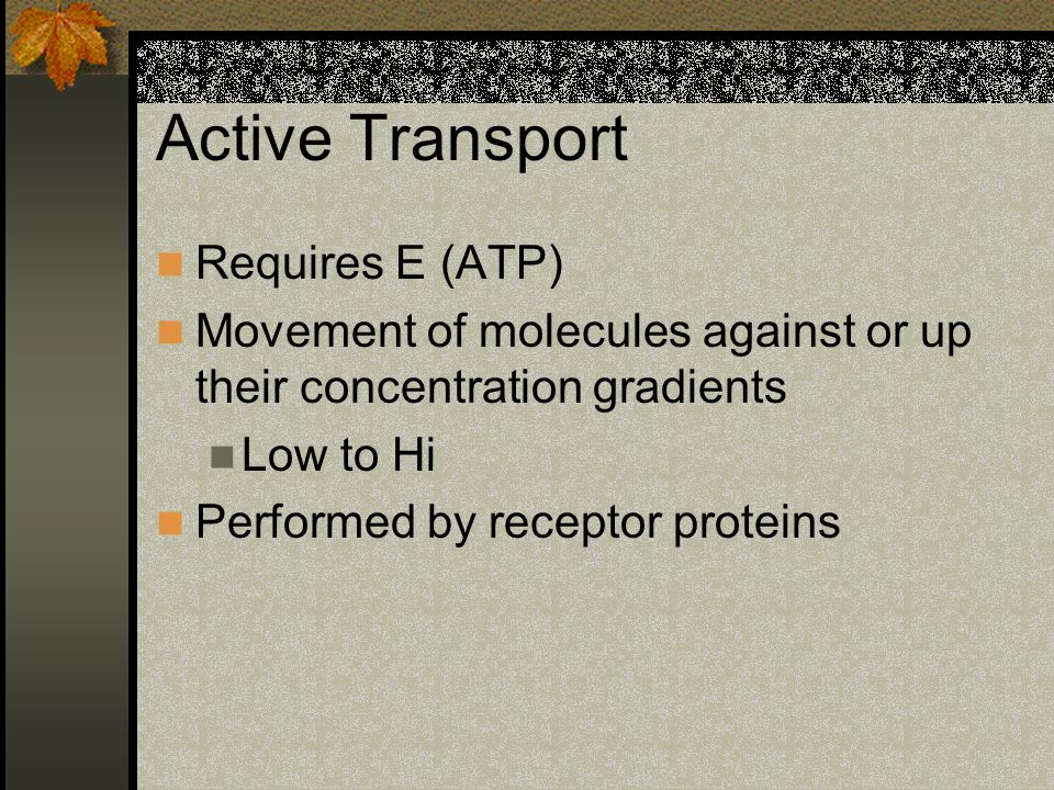 Active Transport Requires E (ATP)