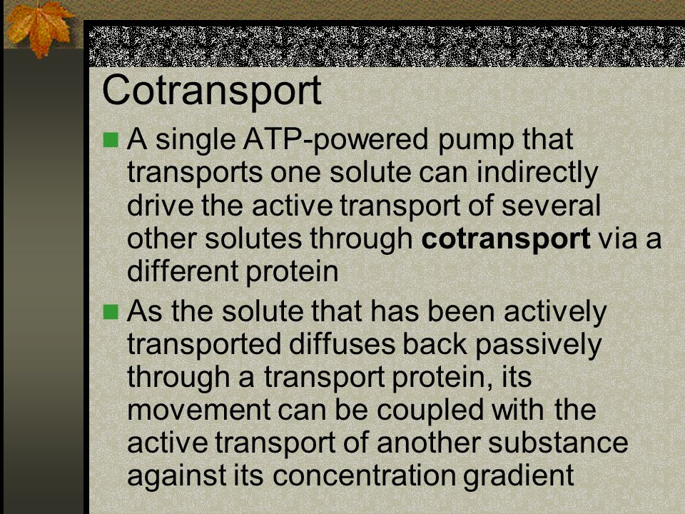 Cotransport