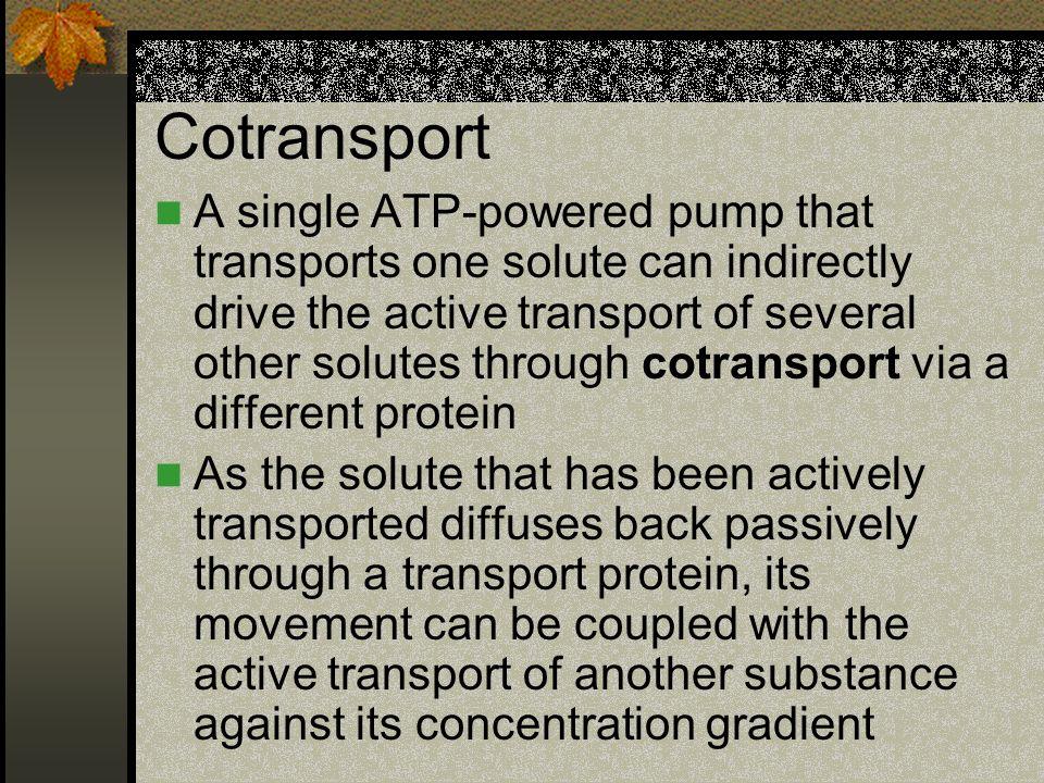 Cotransport