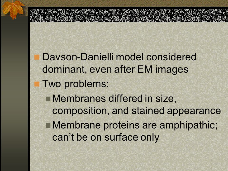 Davson-Danielli model considered dominant, even after EM images