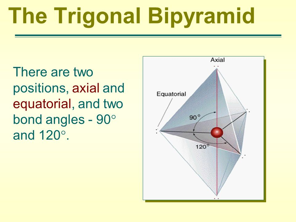 The Trigonal Bipyramid