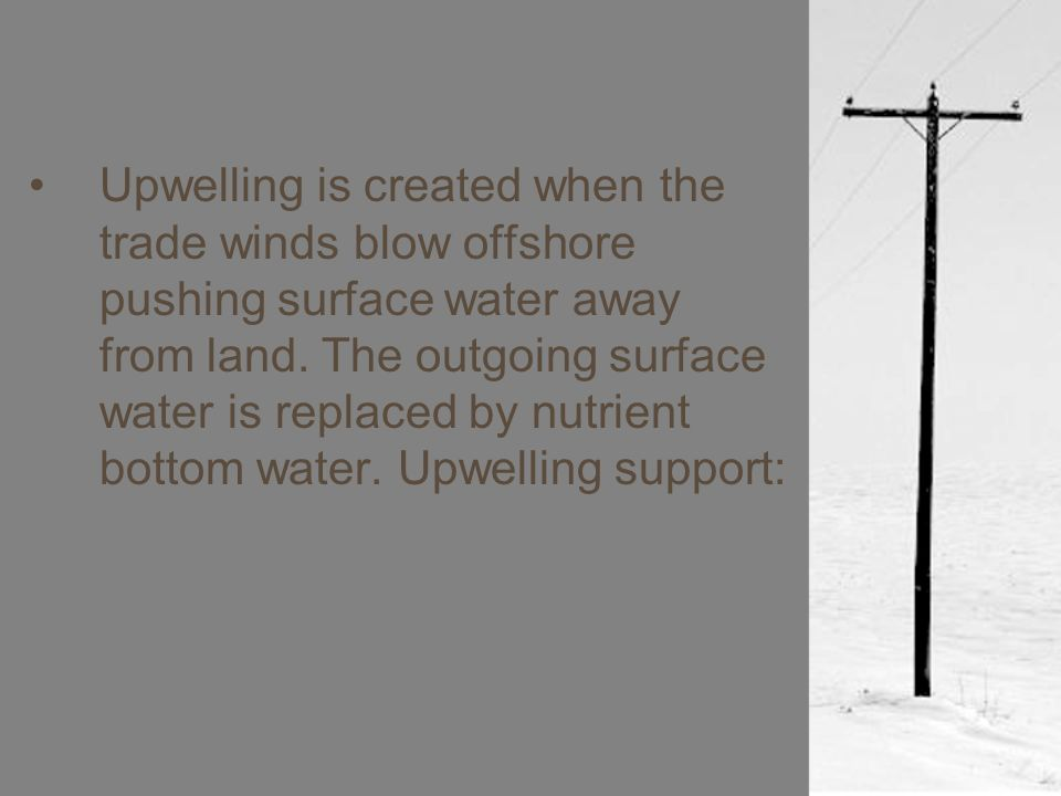 Upwelling is created when the trade winds blow offshore pushing surface water away from land.