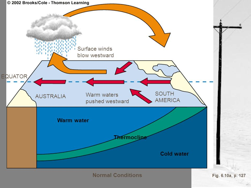 Warm water Thermocline Cold water Normal Conditions
