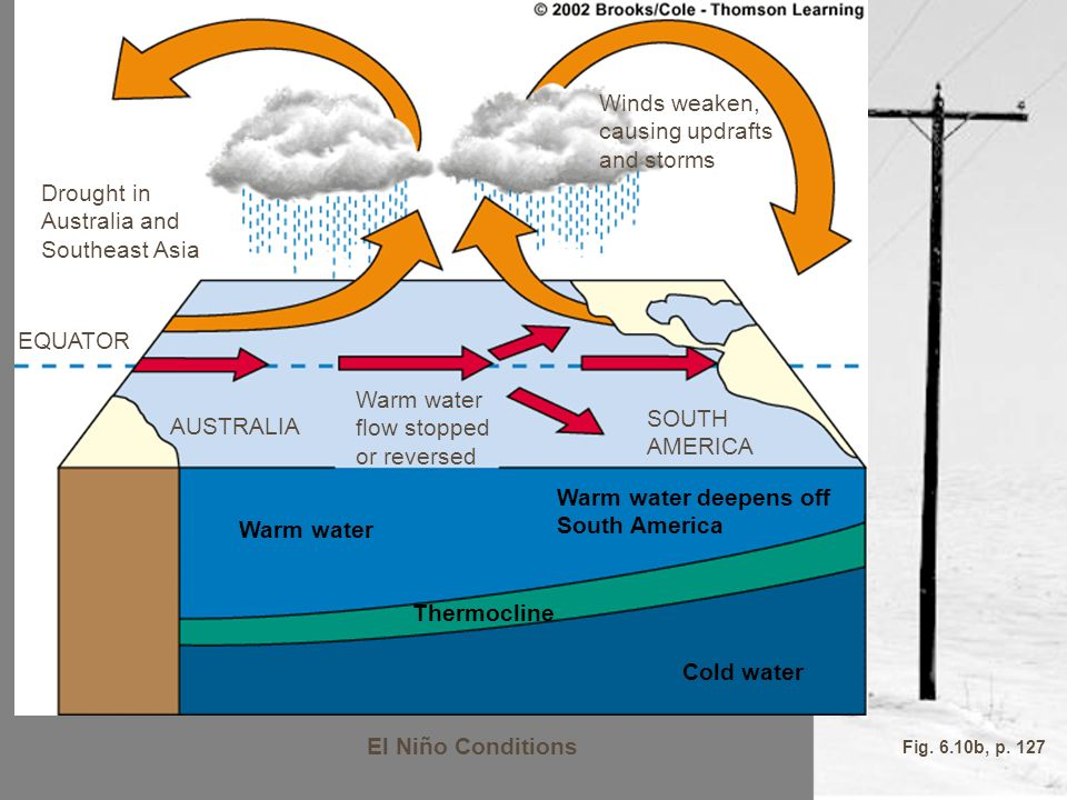 Warm water Thermocline Cold water El Niño Conditions