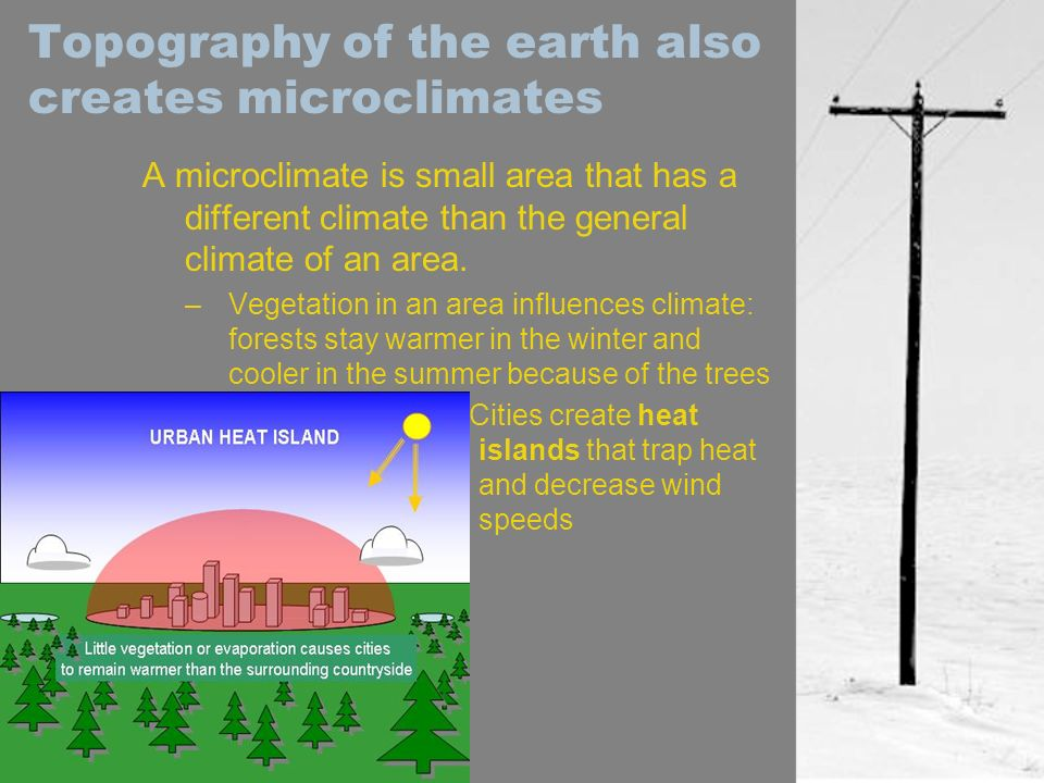 Topography of the earth also creates microclimates
