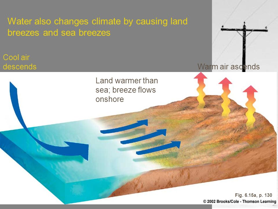 Water also changes climate by causing land breezes and sea breezes