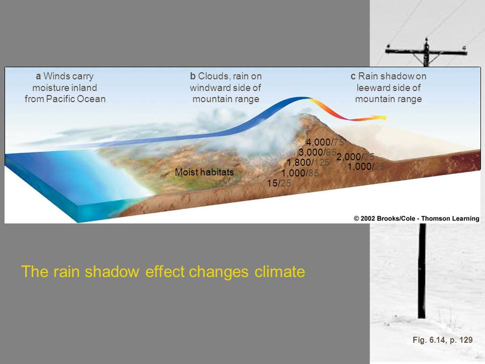 The rain shadow effect changes climate
