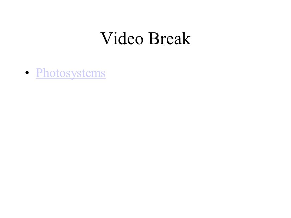 Video Break Photosystems