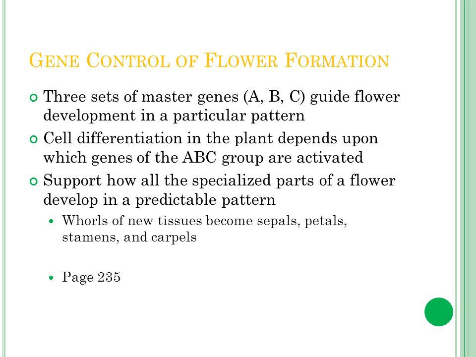 Gene Control of Flower Formation