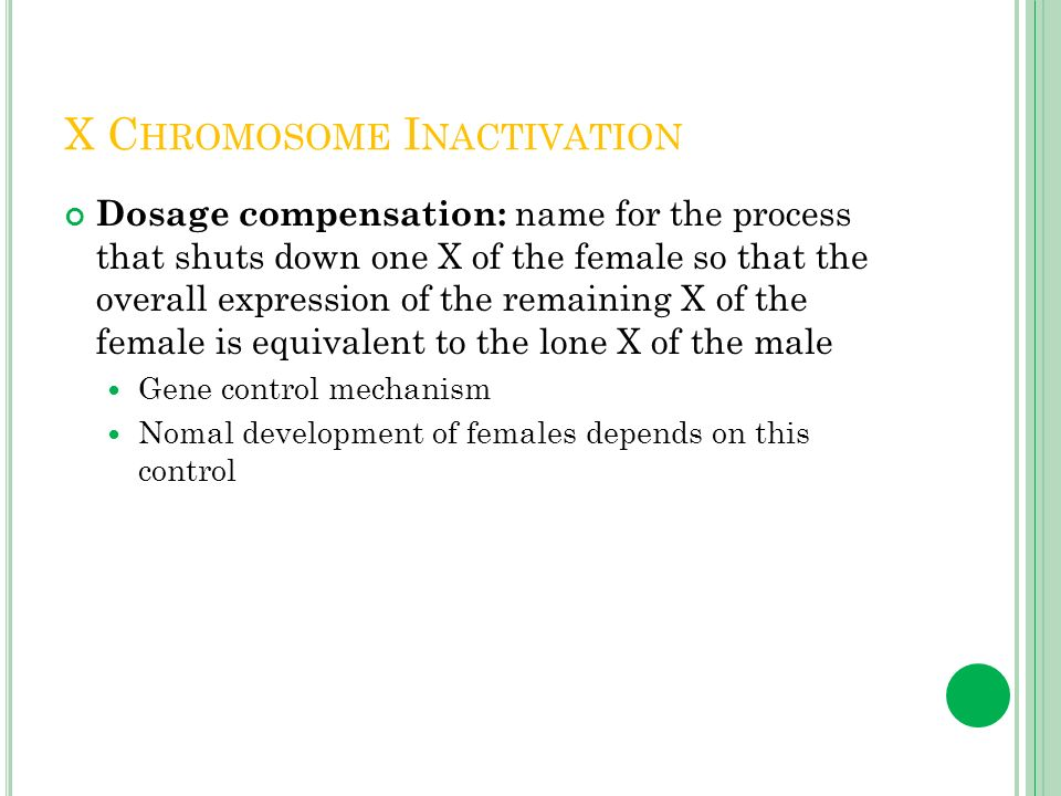 X Chromosome Inactivation