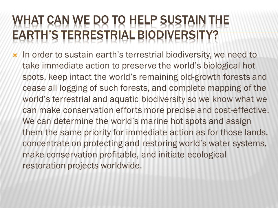 What can we do to help sustain the earth's terrestrial biodiversity