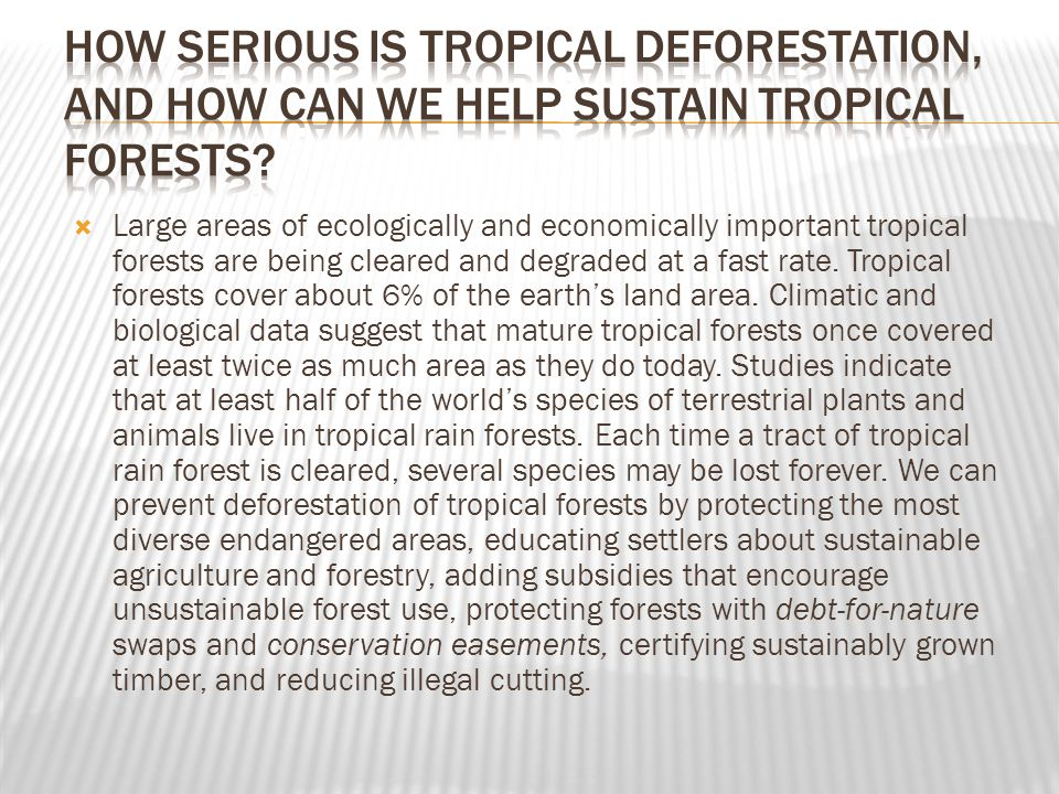 How serious is tropical deforestation, and how can we help sustain tropical forests