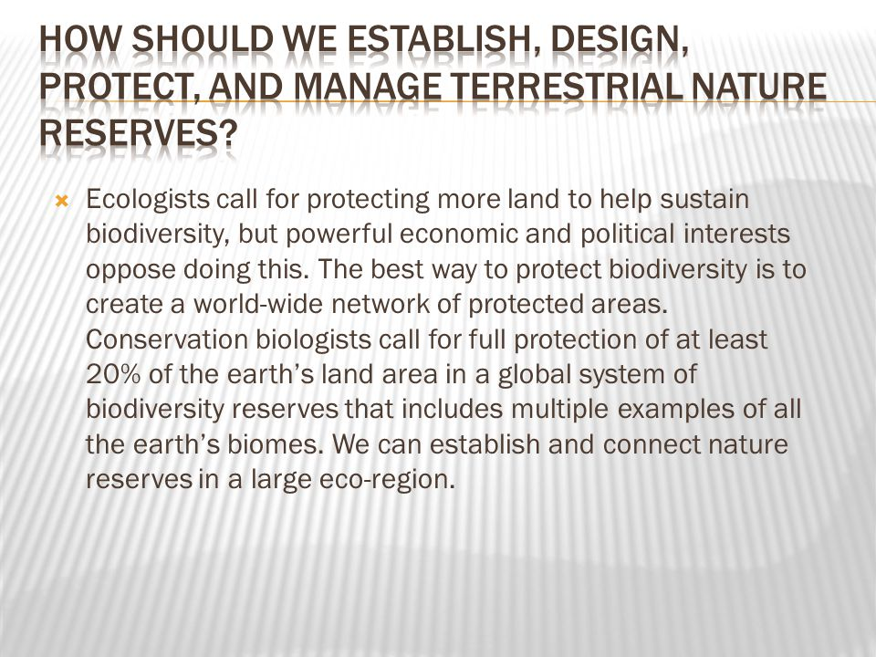 How should we establish, design, protect, and manage terrestrial nature reserves