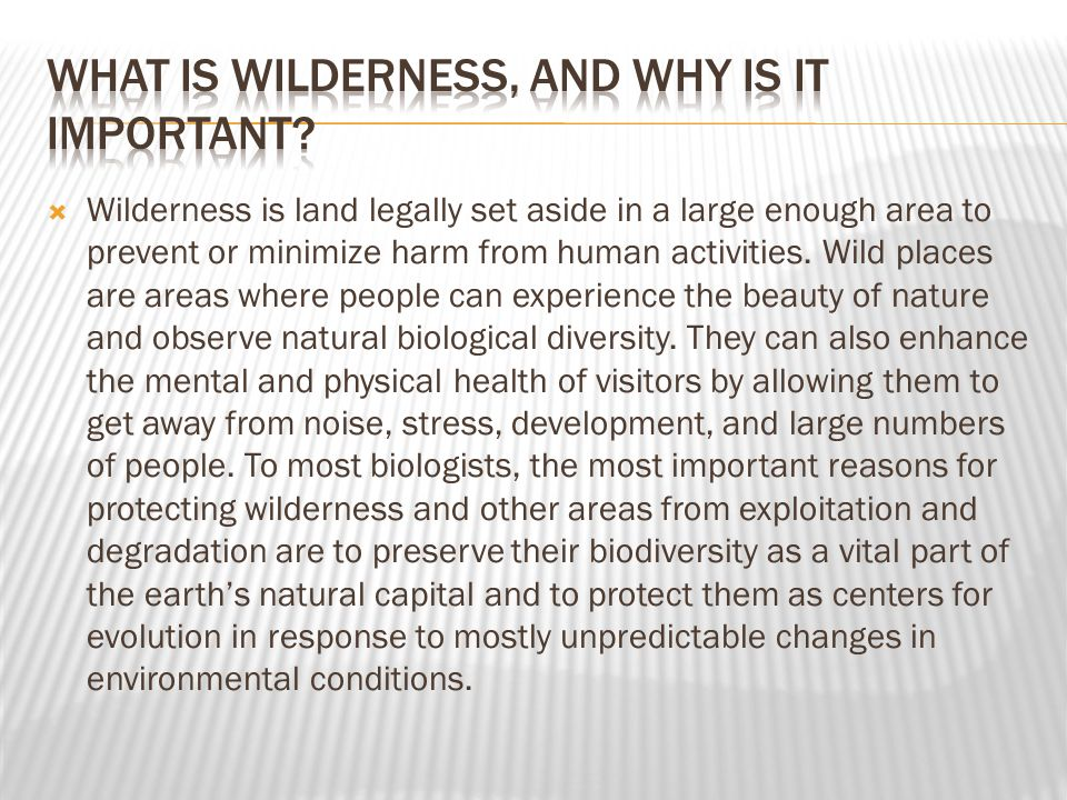 What is wilderness, and why is it important