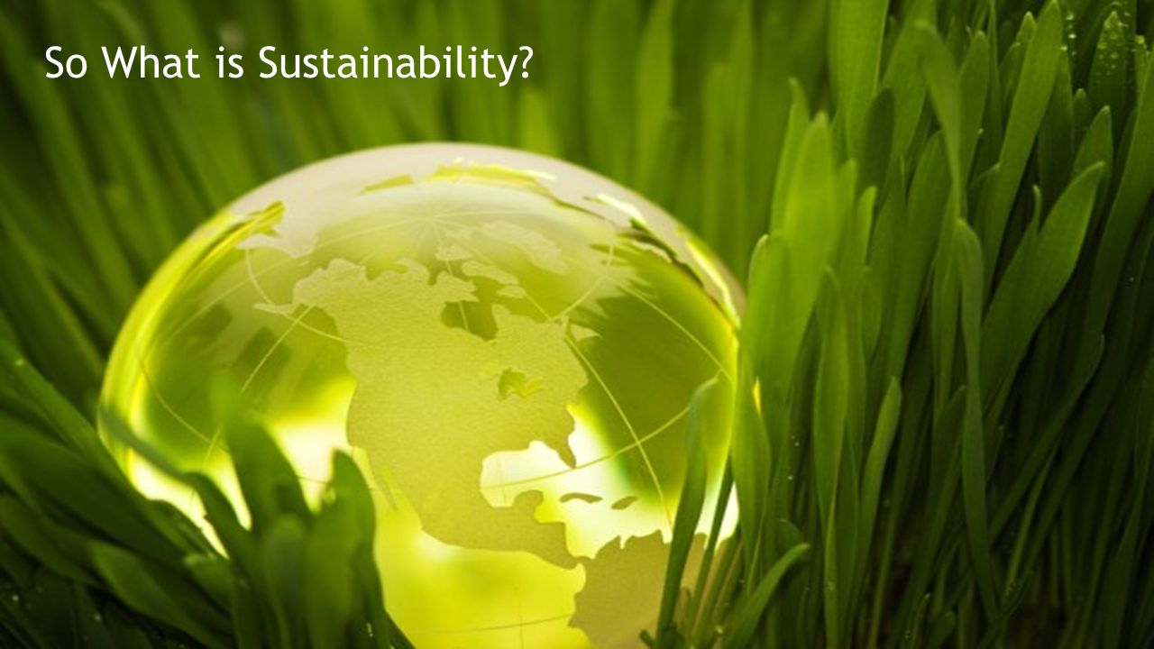 So What is Sustainability