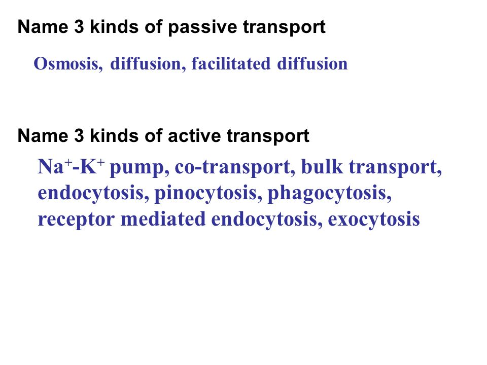 Name 3 kinds of passive transport
