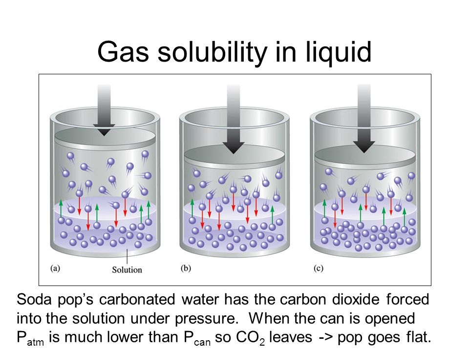 Gas solubility in liquid