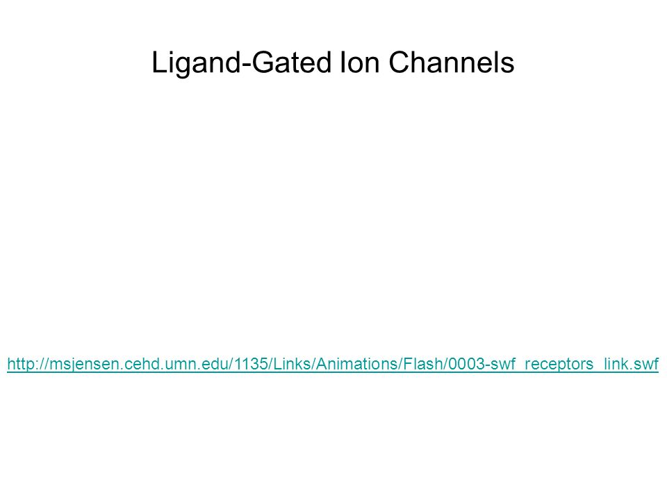 Ligand-Gated Ion Channels