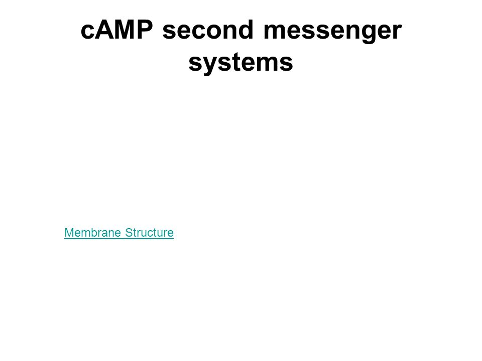 cAMP second messenger systems