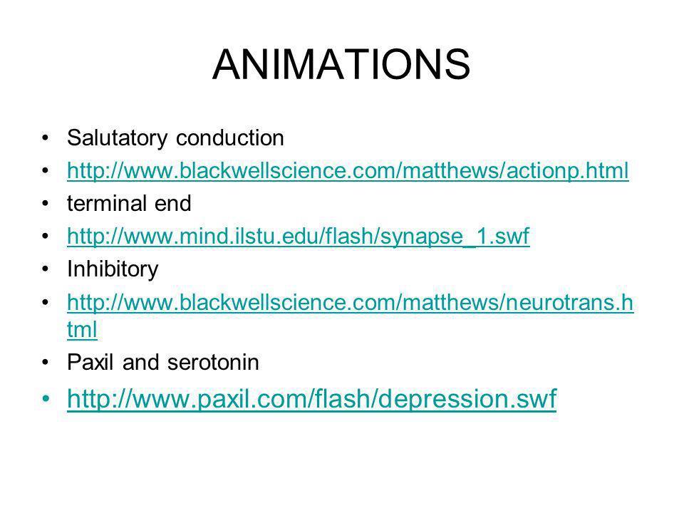 ANIMATIONS http://www.paxil.com/flash/depression.swf