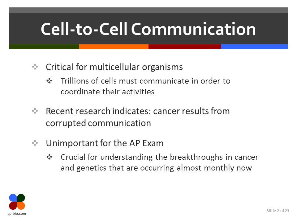 Cell-to-Cell Communication