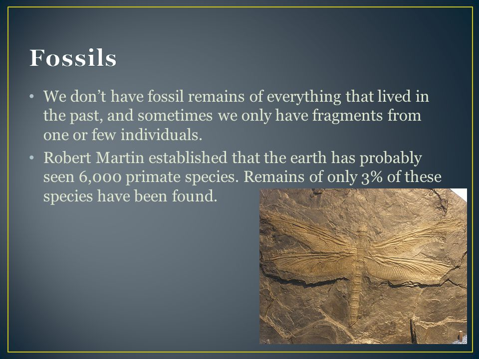 Fossils We don't have fossil remains of everything that lived in the past, and sometimes we only have fragments from one or few individuals.