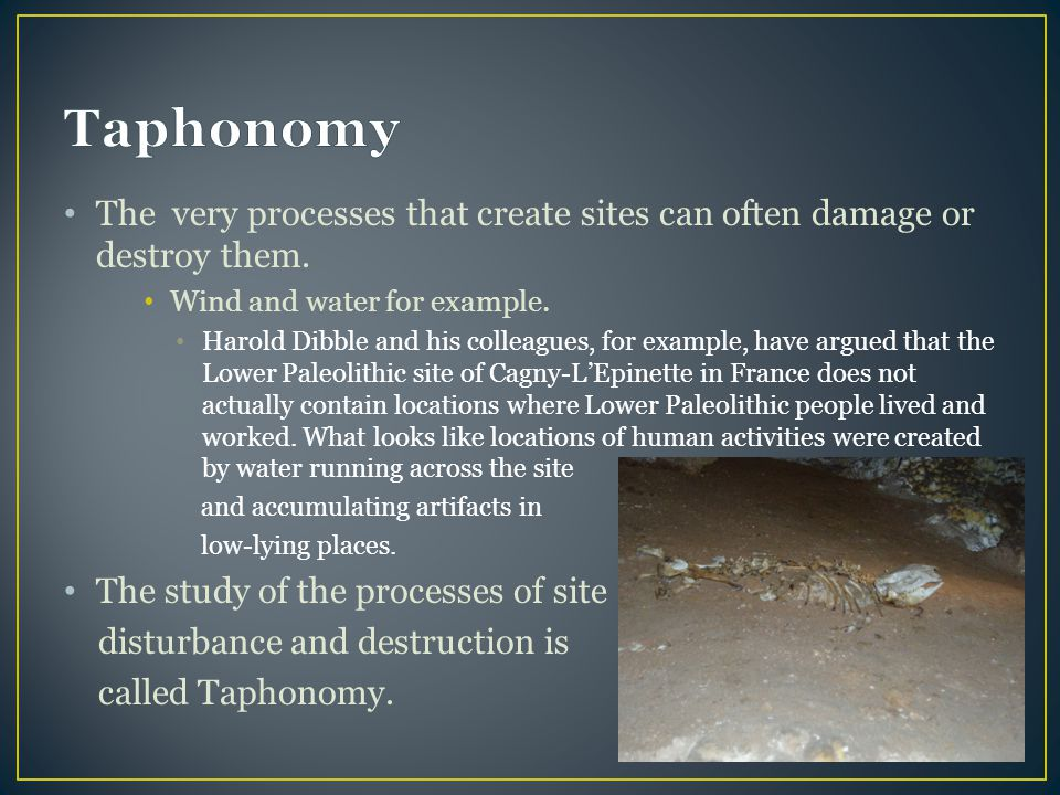 Taphonomy The very processes that create sites can often damage or destroy them. Wind and water for example.