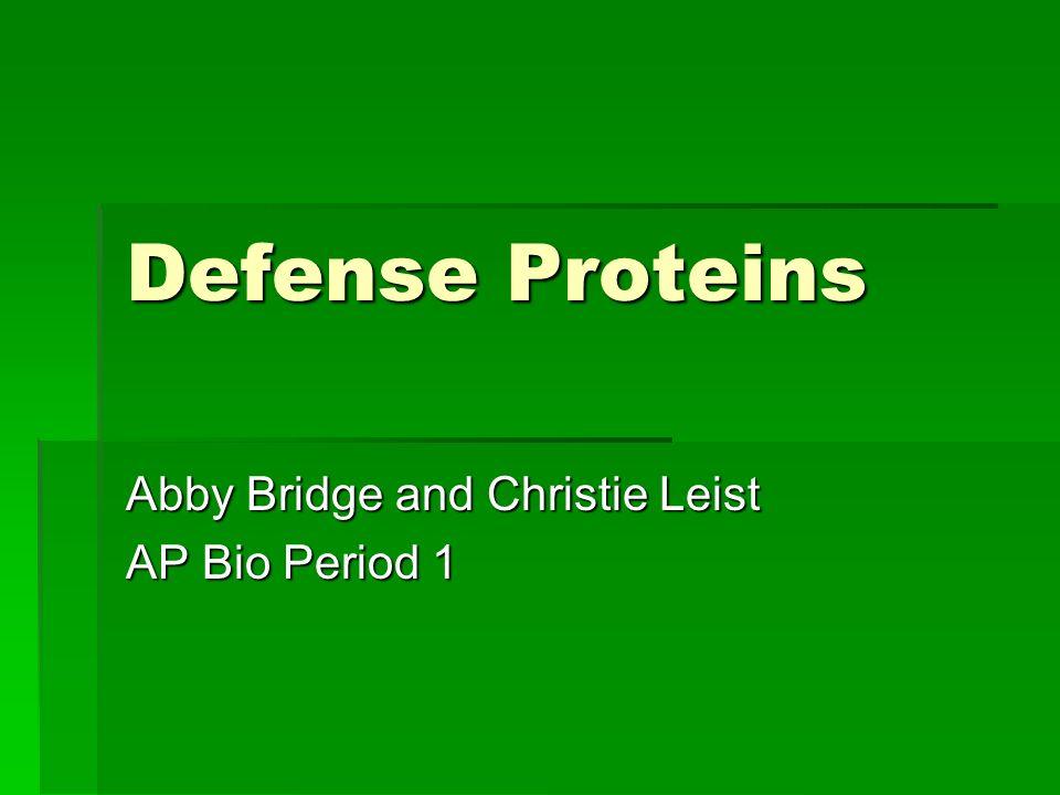 Abby Bridge and Christie Leist AP Bio Period 1