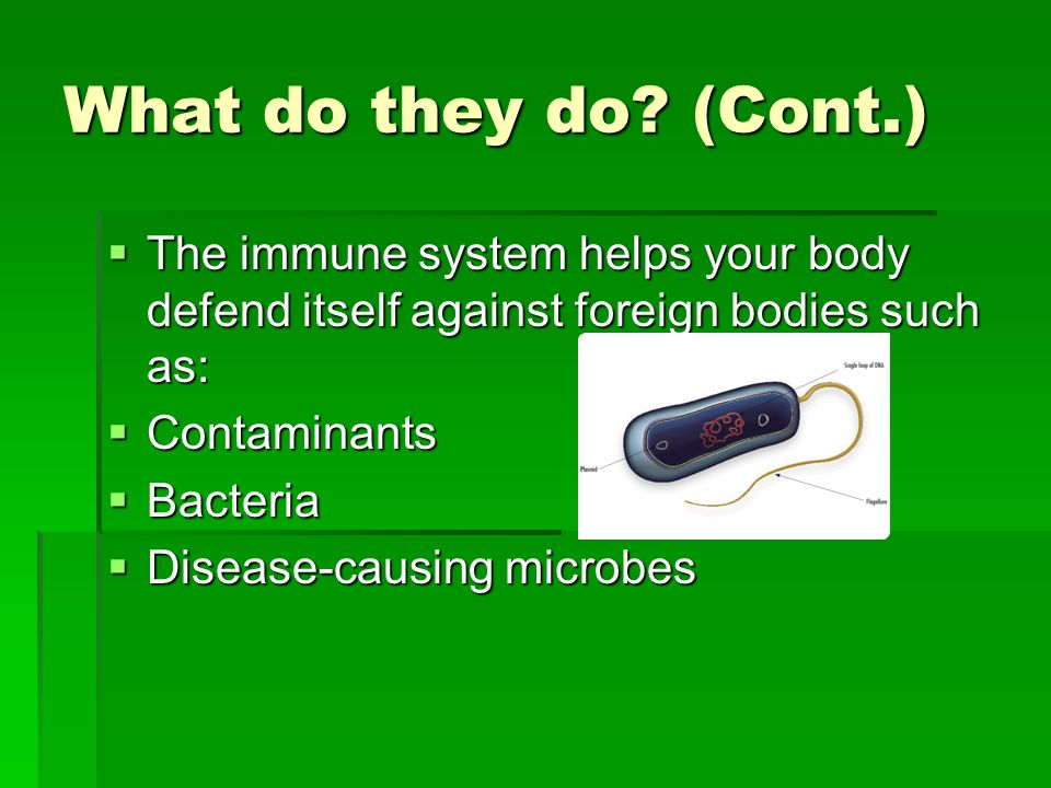 What do they do (Cont.) The immune system helps your body defend itself against foreign bodies such as: