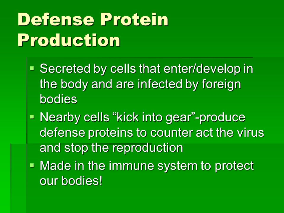 Defense Protein Production