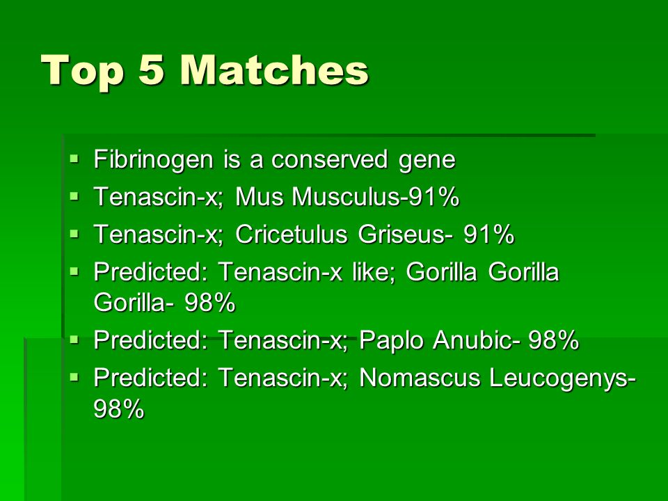 Top 5 Matches Fibrinogen is a conserved gene