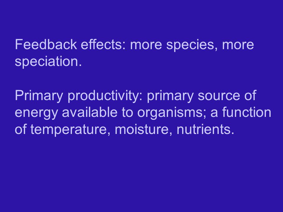 Feedback effects: more species, more speciation.