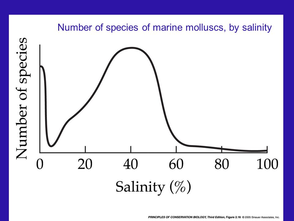 Number of species of marine molluscs, by salinity