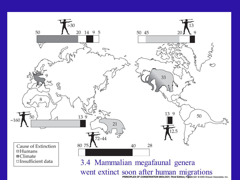 pcb3e-fig-03-04-0.jpg 3.4 Mammalian megafaunal genera went extinct soon after human migrations
