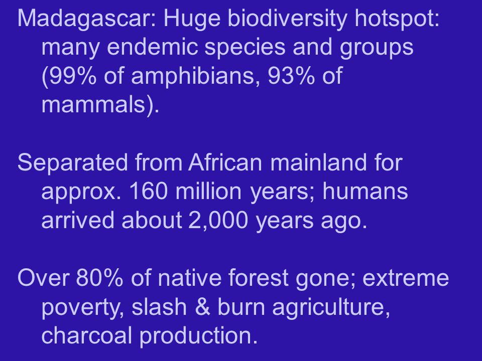 Madagascar: Huge biodiversity hotspot: many endemic species and groups (99% of amphibians, 93% of mammals).