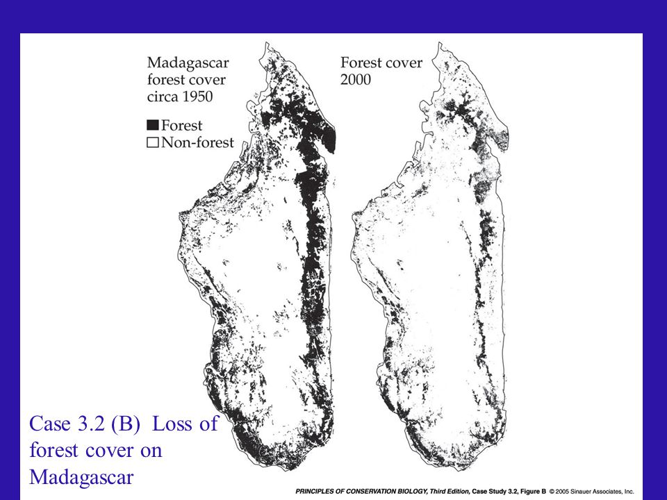 Case 3.2 (B) Loss of forest cover on Madagascar