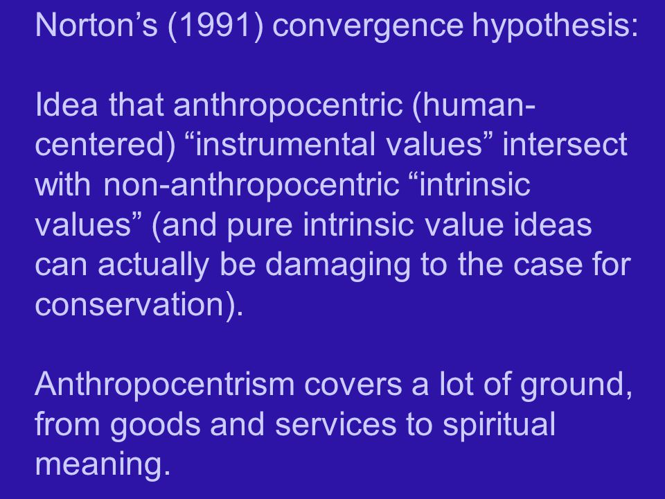 Norton's (1991) convergence hypothesis:
