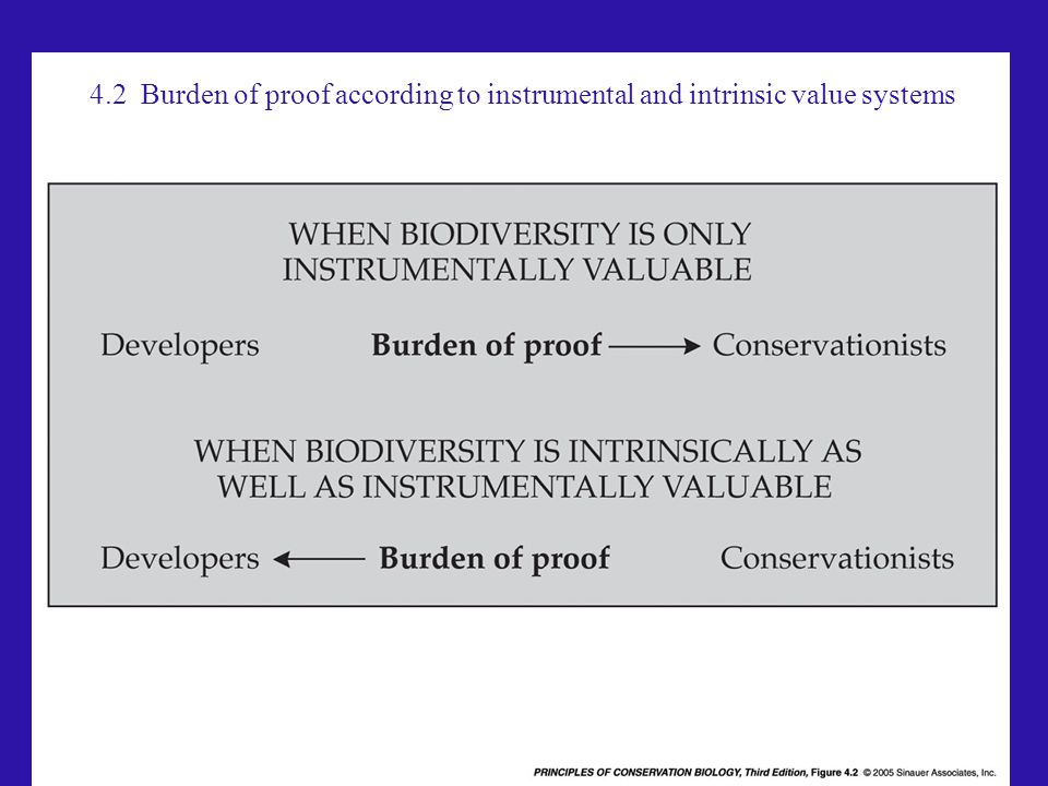4.2 Burden of proof according to instrumental and intrinsic value systems