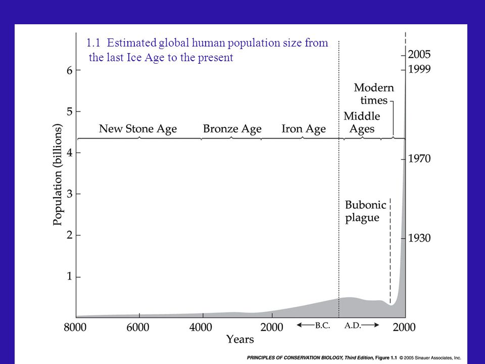 1.1 Estimated global human population size from the last Ice Age to the present