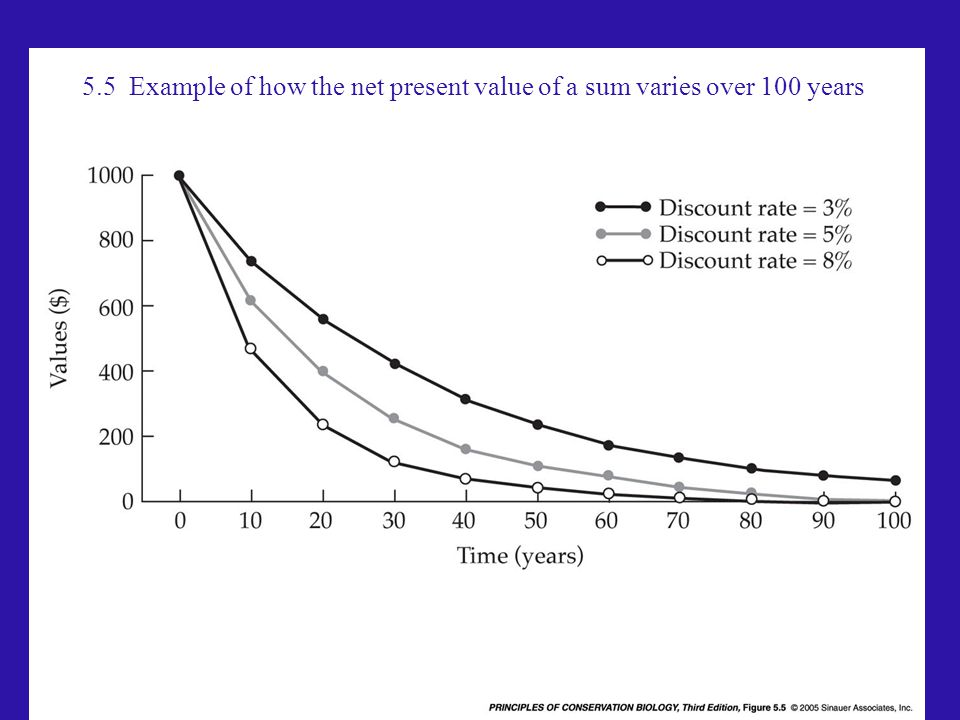 5.5 Example of how the net present value of a sum varies over 100 years