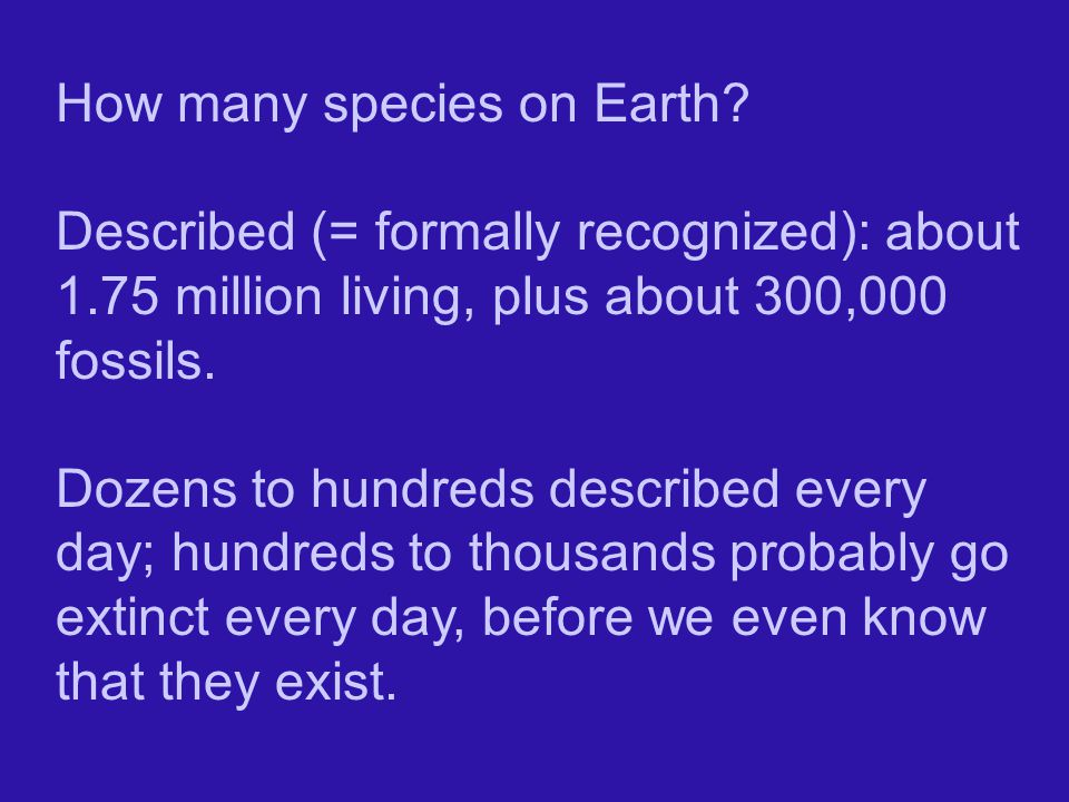 How many species on Earth