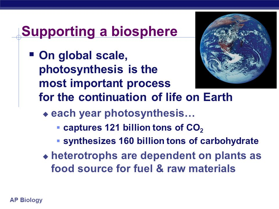 Supporting a biosphere