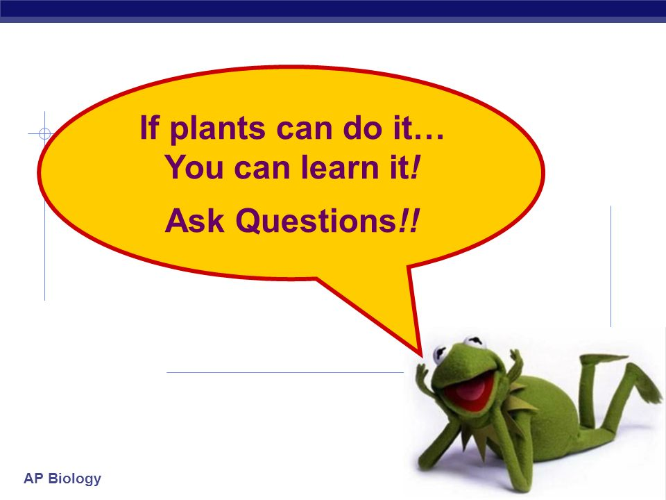 If plants can do it… You can learn it!