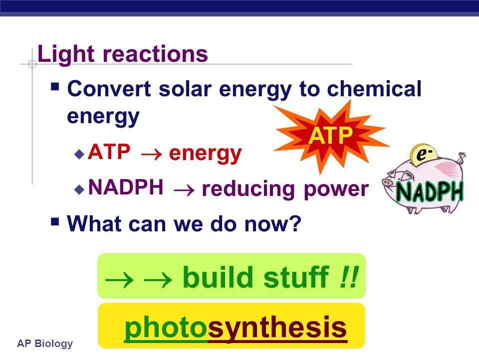   build stuff !! photosynthesis