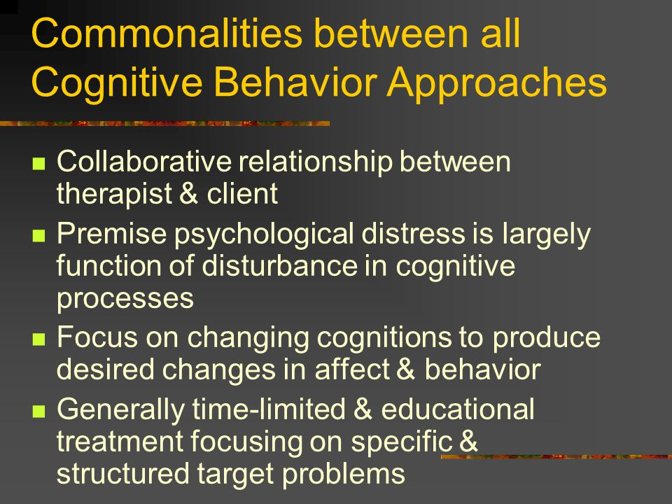 focus on the relationship between brain functioning and behavior